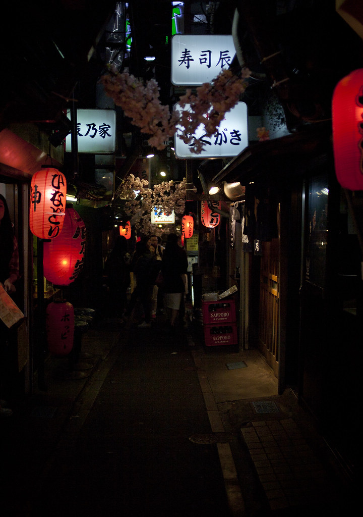 Piss alley, Tokyo, Japan_IMG_4907