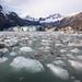 John Hopkins Glacier, Glacier Bay National Park by Amy Heiden