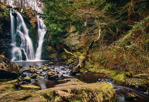 motion tree abbey rock landscape waterfall scenery stream long exposure yorkshire vine blurred valley bolton gill dales desolation posforth