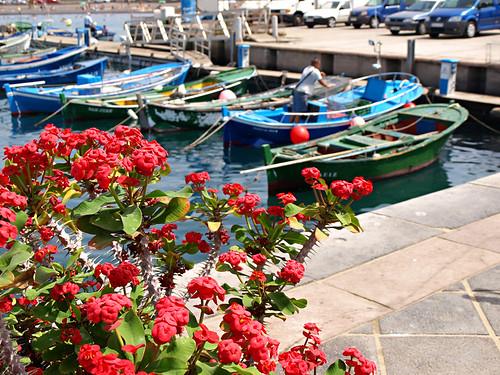Harbour, Las Galletas, Tenerife