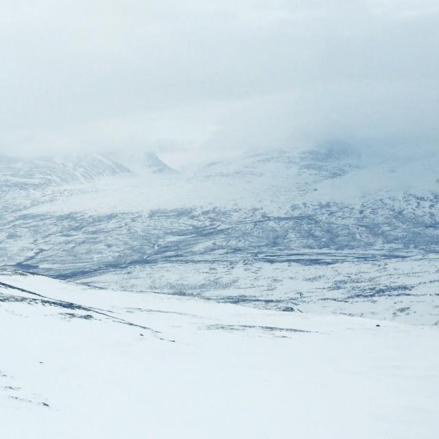 🚁🙏💕❄️ #WTDxWLP #björkliden #visitsweden #abisko #arcticguides #riksgränsen