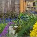 Bee-hotel Garden by Ed Phillips 01