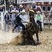 University of Arizona Rodeo by flskibum85