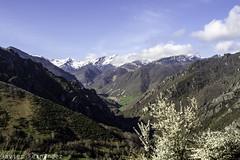 Villar de Vildas