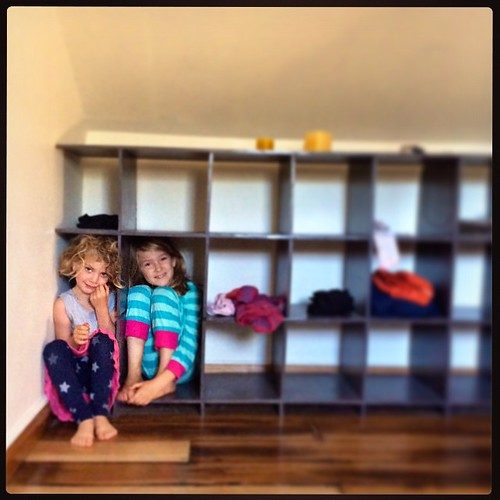 111/365 • the arguing, the arguing, the arguing - I told them not to wreck our holiday and stuffed them in the bookshelf • #111_2015 #tasmania2015 #4yo #7yo #southhobart #parenting #sisters #mybirthdayjourney #autumn2015 #problemshelved