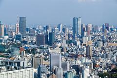 2015 Tokyo cityscape
