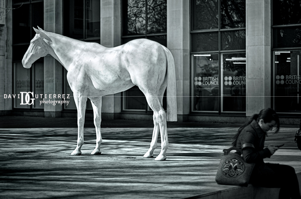 The White Horse in the City, London, UK by David Gutierrez Photography.