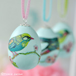 Pretty bird napkin decoupage egg