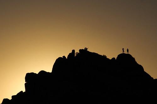 california travel sunset people usa silhouette joshuatree