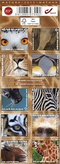 11 Zoo boekje