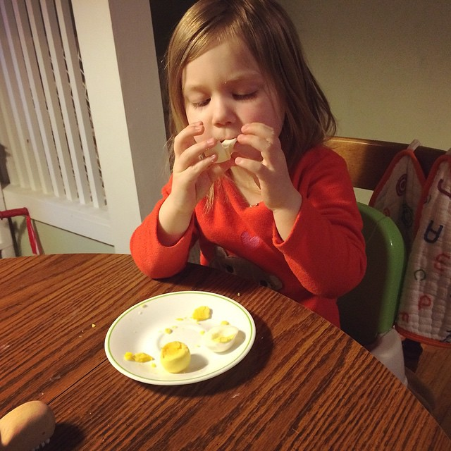 Eating her egg. (I'm actually kind of shocked that Miss Picky dove into her hard boiled egg! She won't eat the yolk, but she gobbled up the rest.)