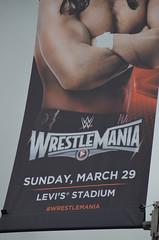 My WrestleMania