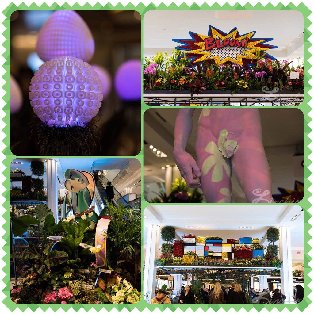 #photogrid #macysflowershow