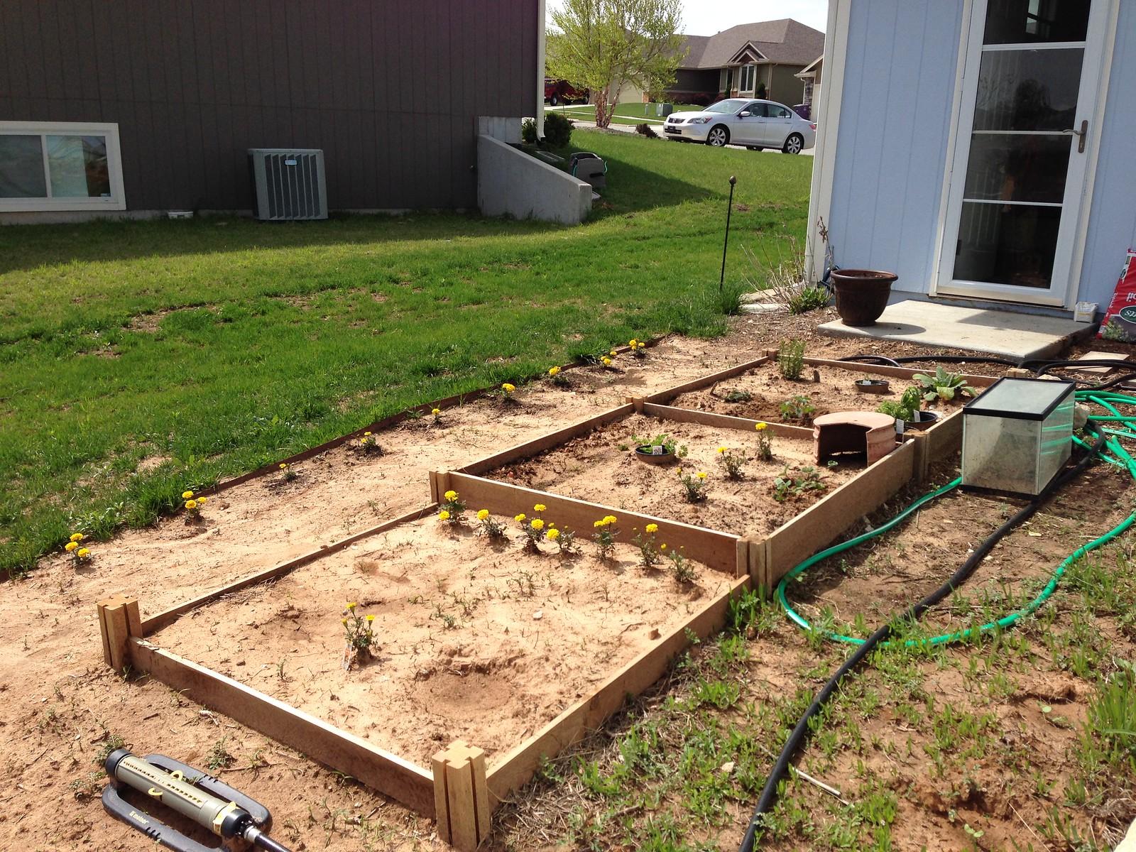 2015-04-27 backyard and kitchen garden