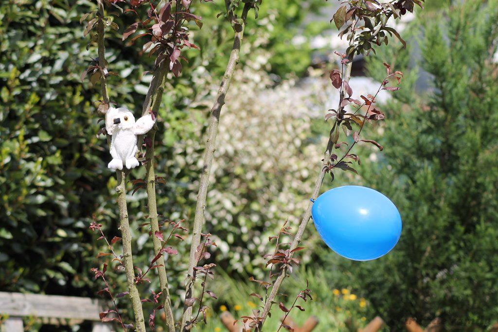 garden party 31