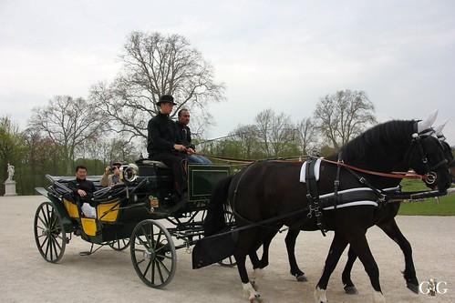 Tiergarten Schönbrunn 17.04.201533