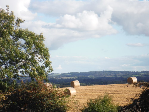 Easterly Chiltern Views from field above Rowsham
