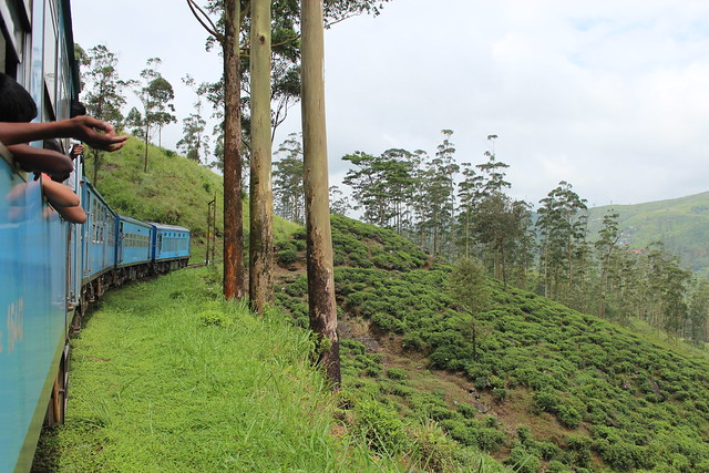 Kandy to Ella Train