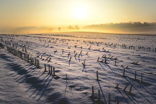 county snow color rural america sunrise landscape spring cornfield colorful pennsylvania farm country bart farmland amish lancaster lancastercounty snowscape pennsylvaniadutch ruralamerica quarryville pennsylvaniadutchcountry