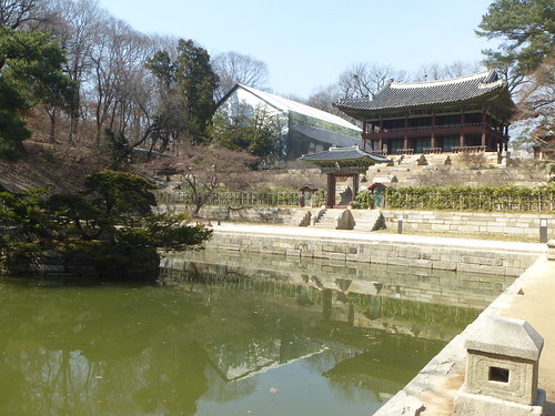 Co-Seoul-Palais-Changdeokgung-Jardin secret (4)