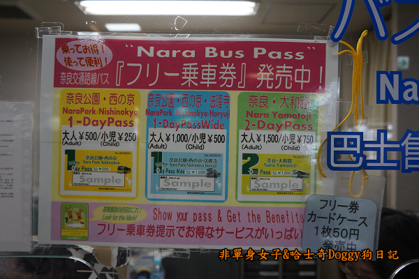 日本奈良公園東大寺05