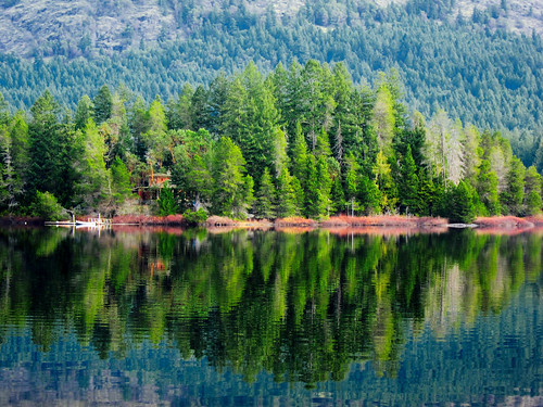 lake reflection canadian vancouverisland pacificnorthwest