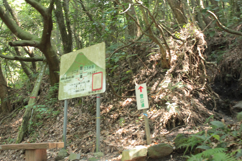 20140531-開聞岳-0258.jpg