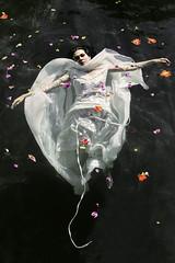 Ophelia | Gisela Rodriguez