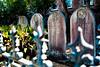 Saint Mary of the Annunciation Cemetery - Charleston, SC