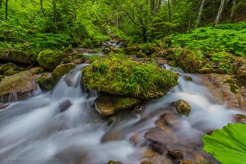 nature forest river landscape schweiz waterfall wasserfall natur fluss landschaft wald langzeitbelichtung longtimeexposure appenzellerland appenzellinnerrhoden schwende leuenfall