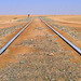 20050705   Dune 7, Namibia 013a by Gary Koutsoubis