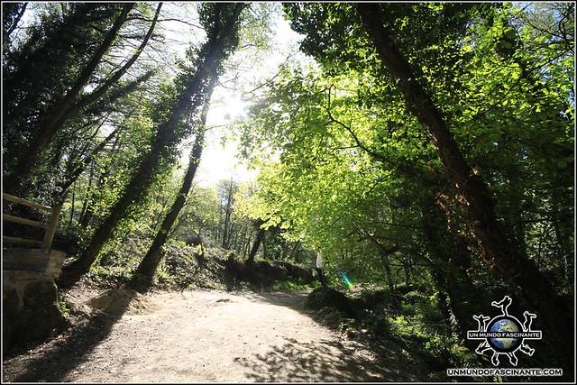 De camino a la Cascada de Marta, Valle del Jerte. España.