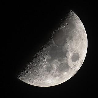 Luna in Vancouver ii