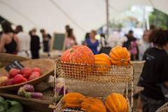 OZCF Market, Produce, Pumpkins