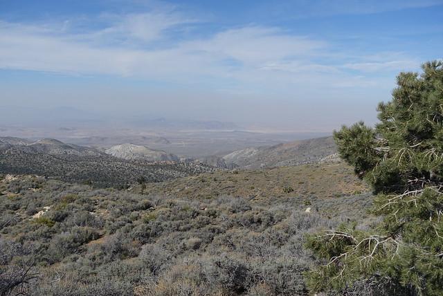 Mojave desert view, m262