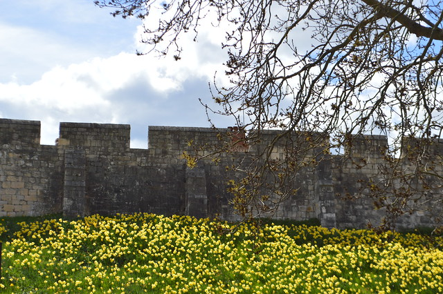 This is a photo of the wall surrounding York City.