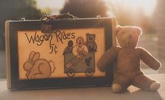 Teddy Bears/toys