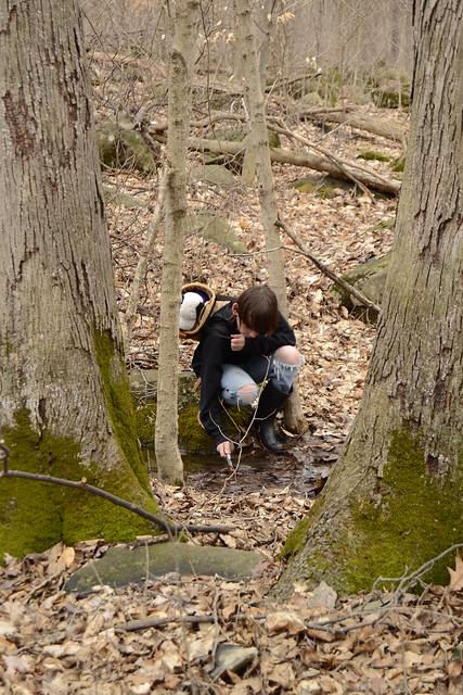 Creek Explorers
