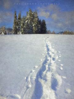 raquette tracks