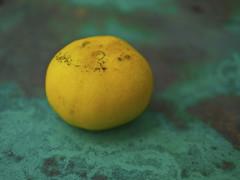 grapefruit_P1540749