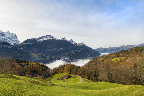 house mountains grass fog clouds forest landscape switzerland nikon calm bern d800 colrful hasliberg