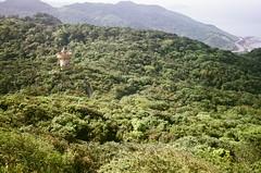 nature reserve, mountain, valley, mountain range, hill, hill station, flora, ridge, forest, natural environment, jungle, biome, vegetation, plantation, mountainous landforms,
