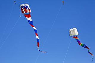 Kite flying 4