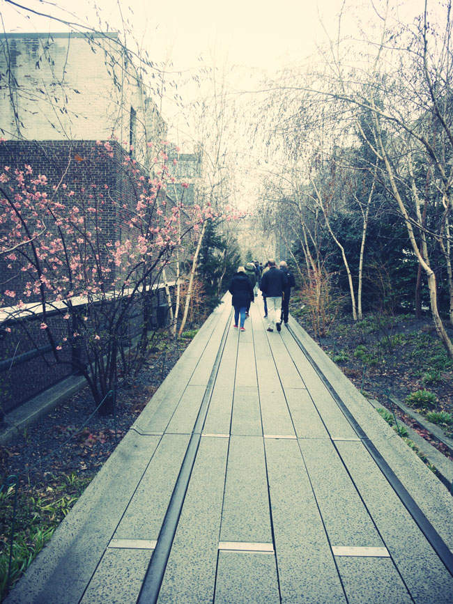 chelsea-highline-new-york