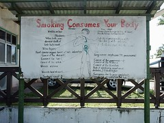 Smoking Consumes Your Body