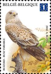 12 BUZIN 25 timbrea