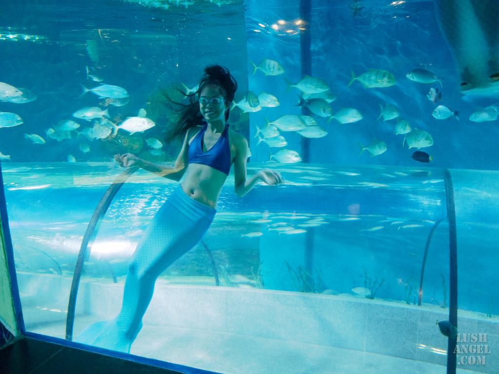 boracay-mermaid-experience