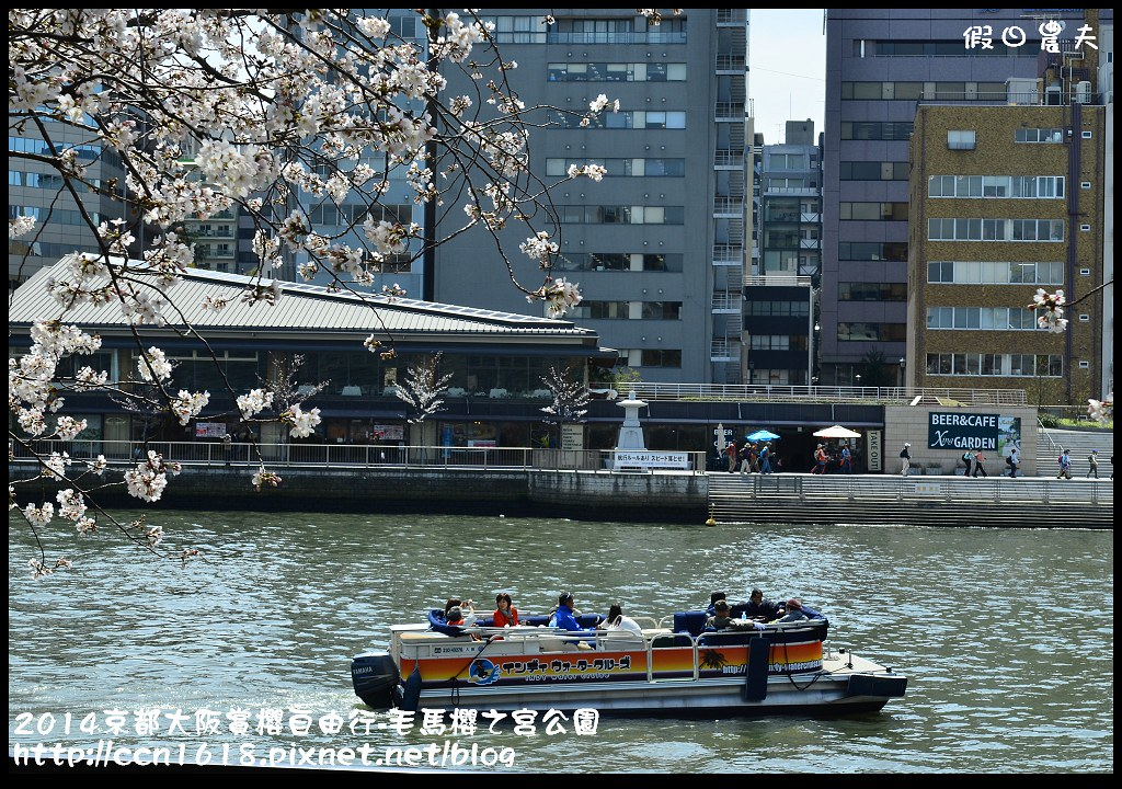 2014京都大阪賞櫻自由行-毛馬櫻之宮公園DSC_2102