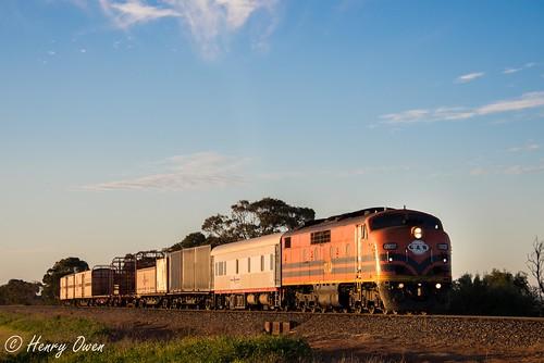 sunset clyde diesel sa southaustralia goldenlight emd gwa 4172 mallala gmclass gm37 sctlogistics geneseewyomingaustralia scttransfer