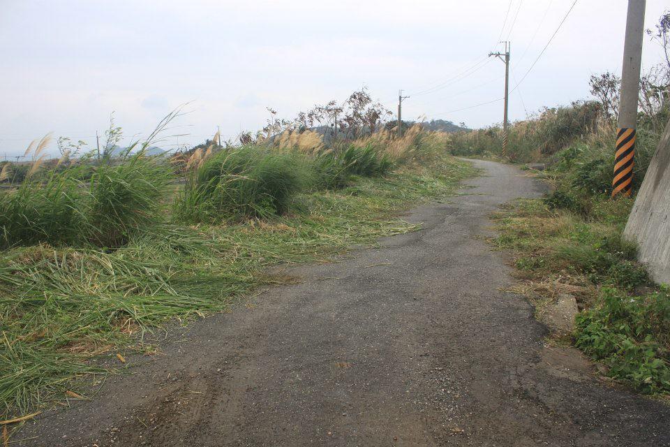 田區附近產業道路的長草也順便砍除 以免被人噴除草劑汙染農田與水源